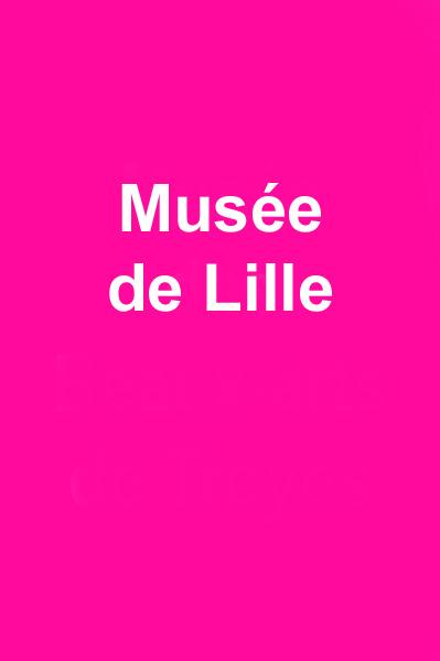 Musée de Lille